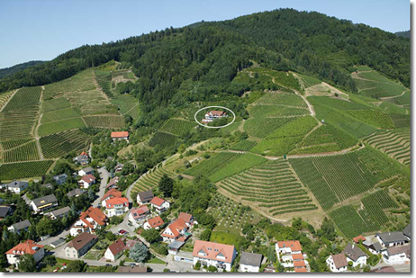 Hotel restaurant landhaus haus am berg oberkirch baden for Modernes haus berg